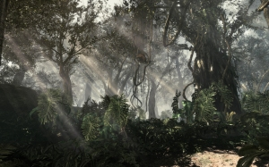 COD_Ghosts_Jungle_Environment_1